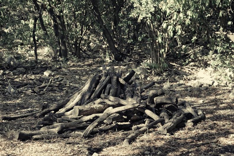 Le sentier des Charbonnières