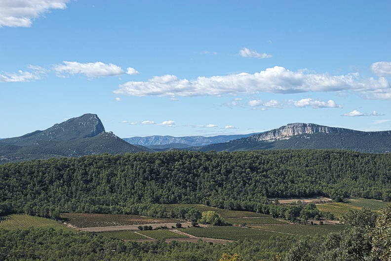Pic Saint Loup et Hortus
