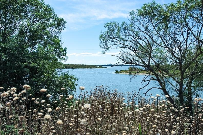 Jonction entre Vidourle et étang du Ponant