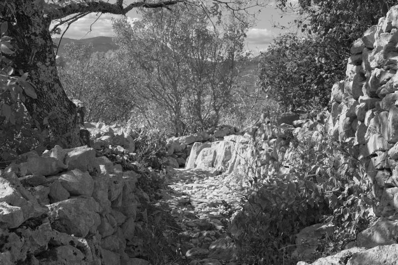 Sentier dans la Mer des Rochers ( N/B )
