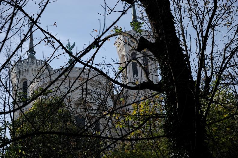 Notre dame de Fourvière derrière les arbres