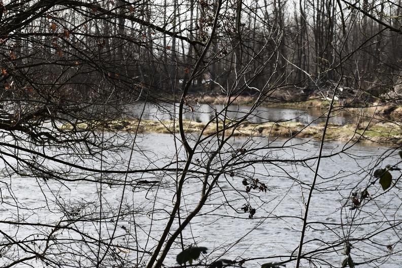 Loire au niveau de l'étang de Cuzieu